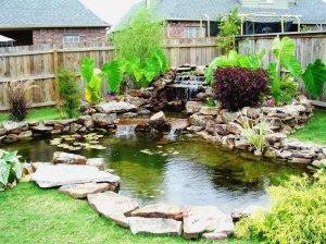 garden_pond_koi9